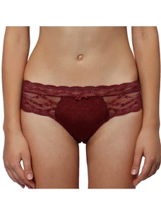 Women's Sexy Mesh Hipster Panty Burgundy Romantic Allover Lace